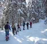 2013-02-23 01 schneeschuhwandern